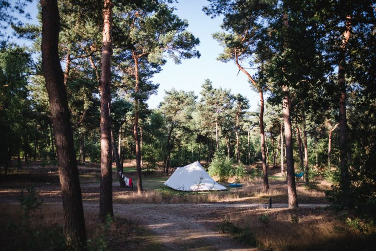Naturcampingplatz De Vlagberg, campen in der Natur